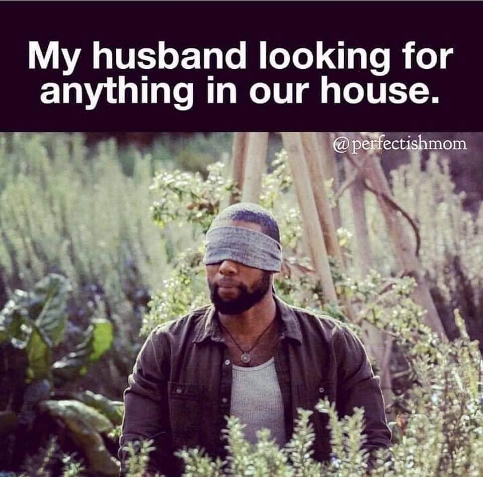 funny husband and wife memes image