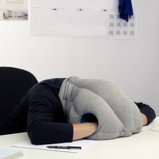 funny gift ostrich pillow