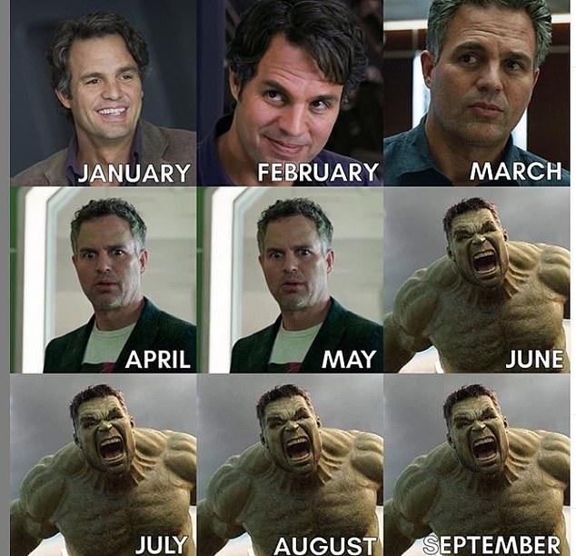funny celebrity memes mark ruffalo