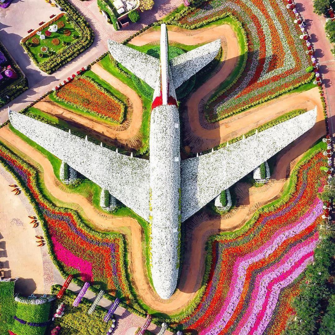beautiful garden aeroplane dubai miracle garden