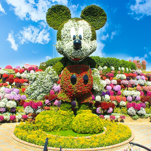 beautiful garden mickey mouse dubai miracle garden