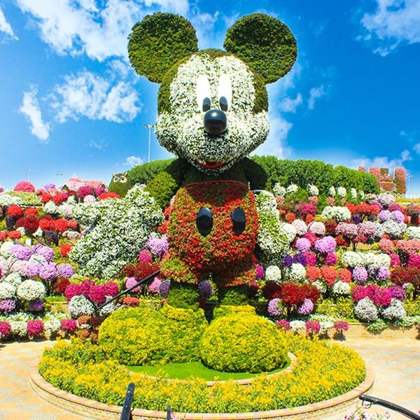 beautiful garden mickey mouse dubai miracle garden