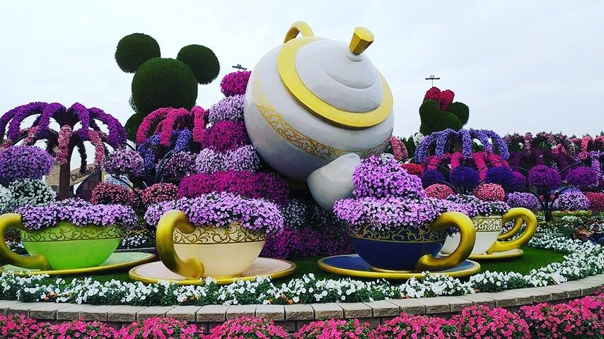 beautiful garden teacup dubai miracle garden