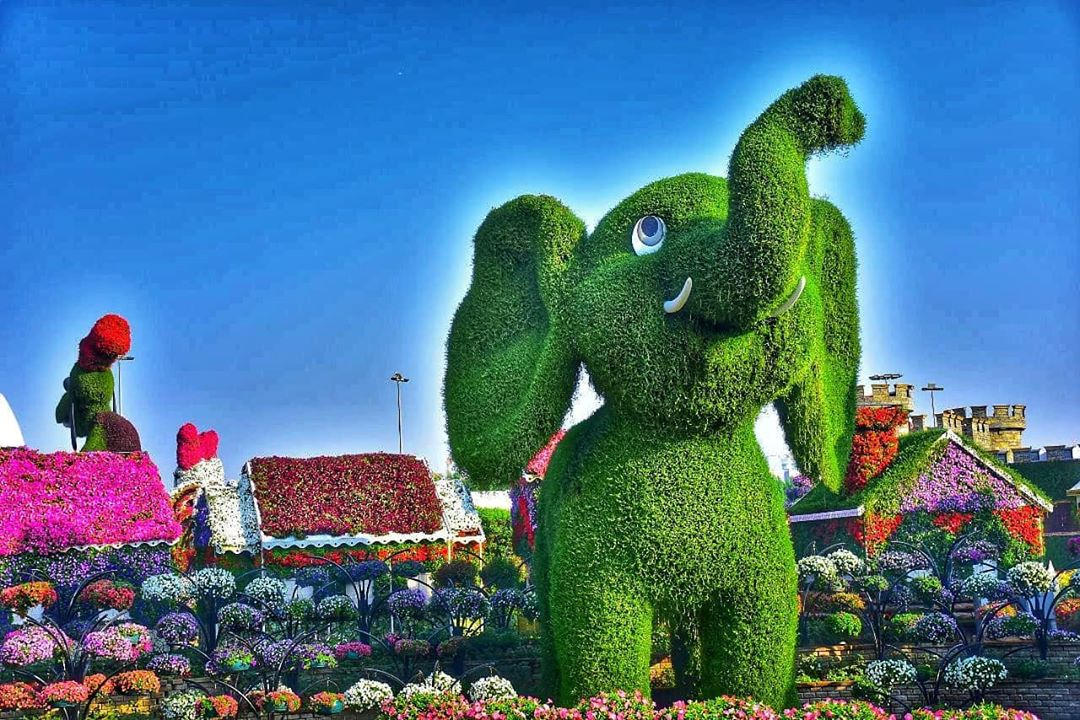 beautiful garden elephant dubai miracle garden