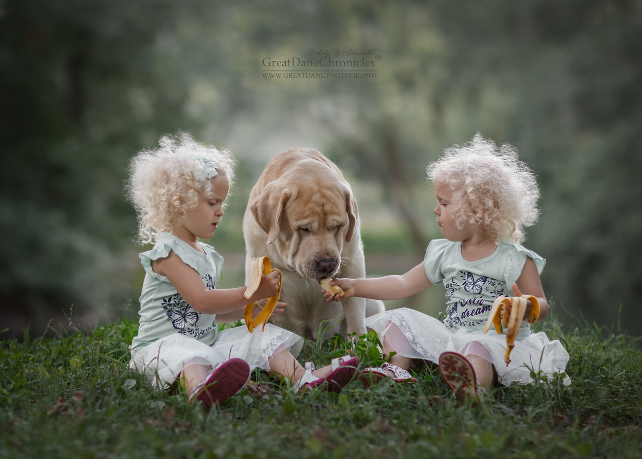 cute kids big dogs great dane photography andy seliverstoff