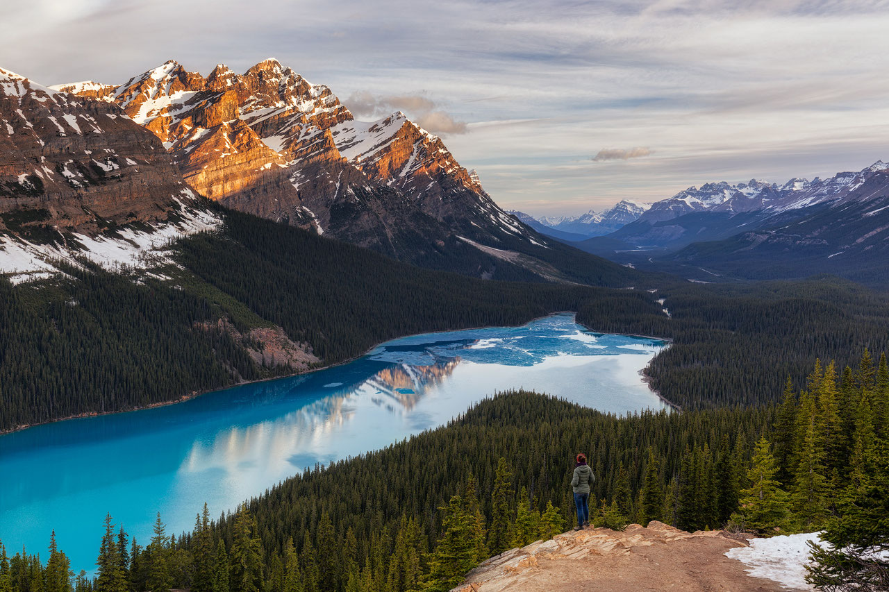 beautiful peyto lake icefields parkway canadian rockies