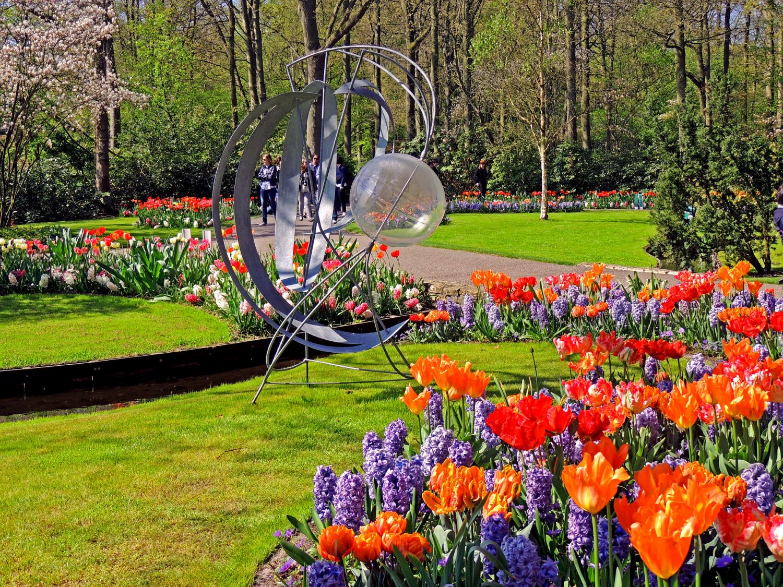 beautiful tulip garden rosetta