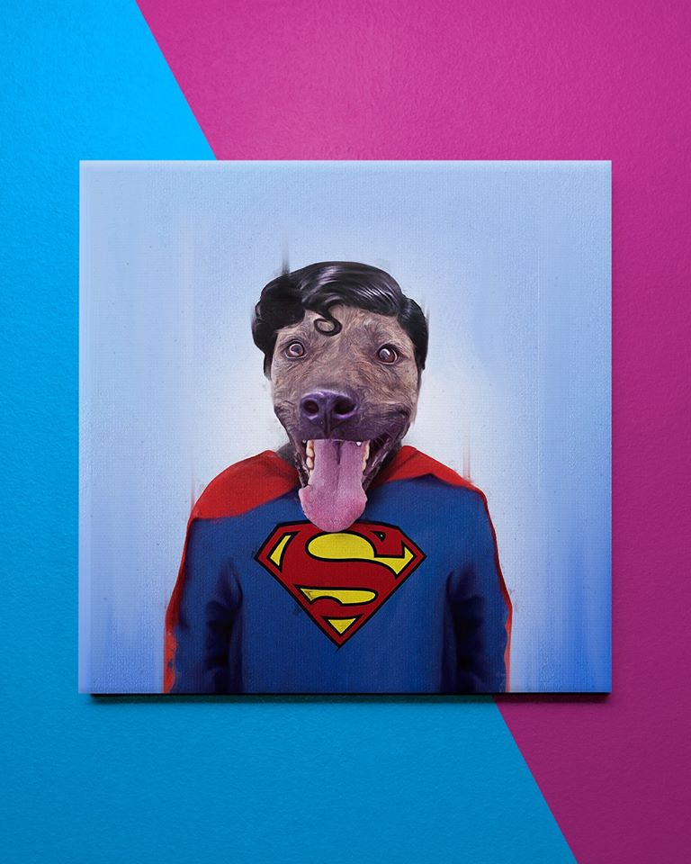 funny pet superstar superman andreas haggkvist