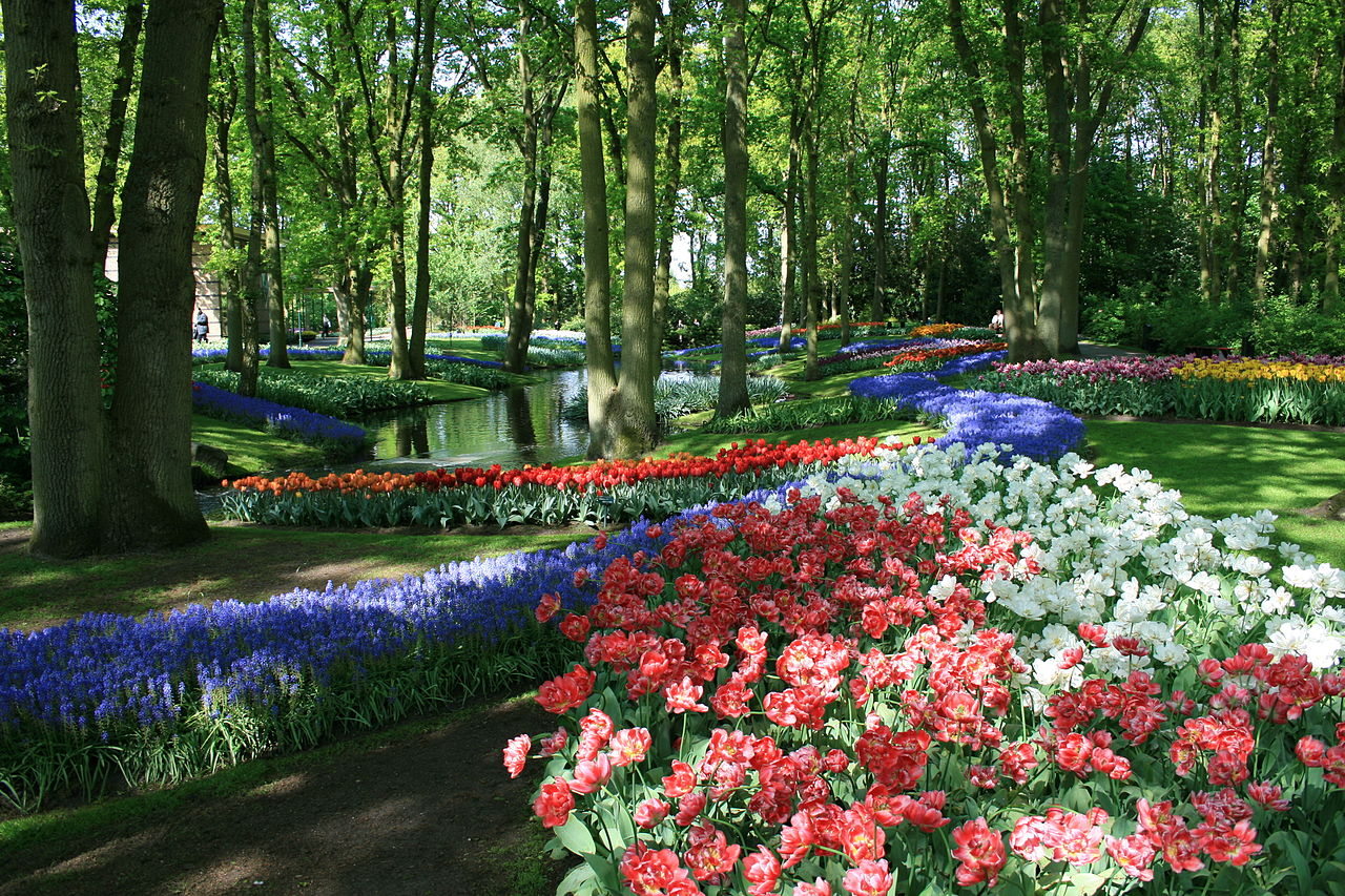 beautiful pictures keukenhof tulip garden