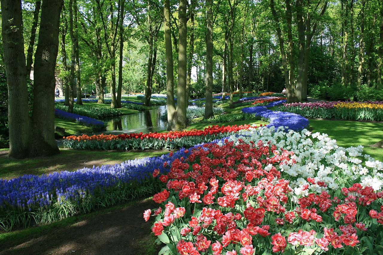 beautiful pictures keukenhof tulip garden