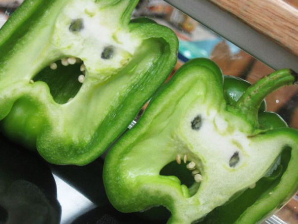 funny optical illusion image capsicum