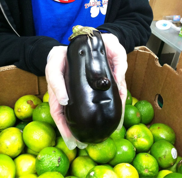 funny optical illusion image brinjal