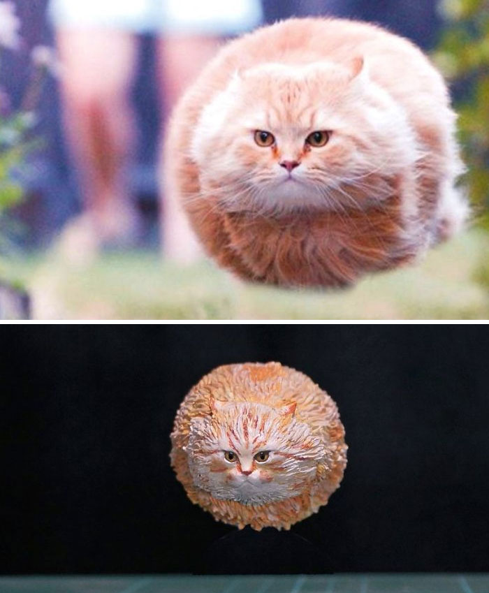 funny animal meme sculpture meetissai