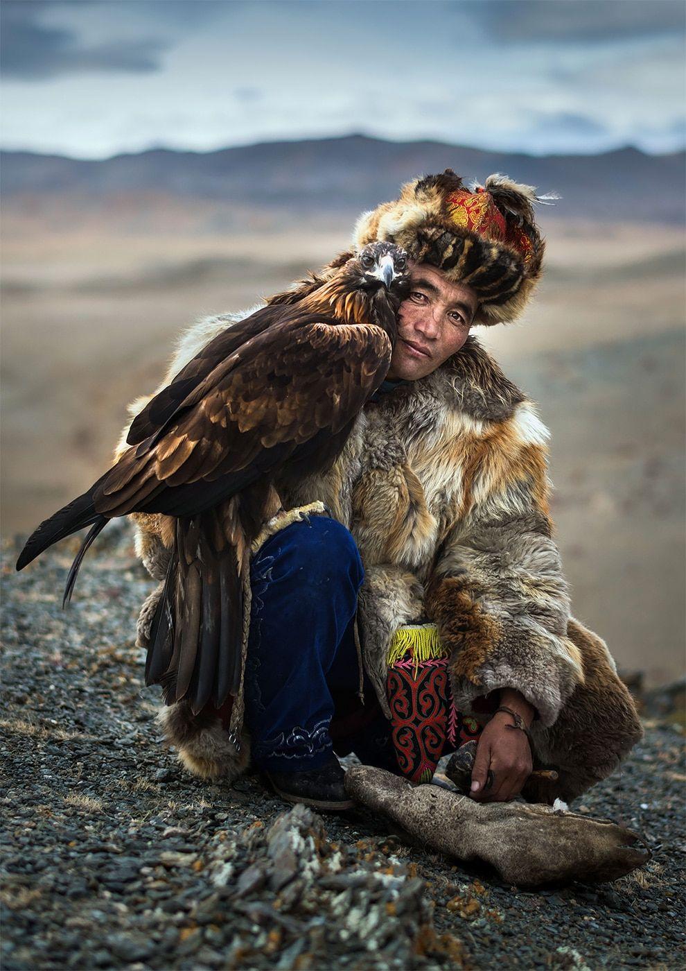 beautiful mongolian eagle picture daniel kordan