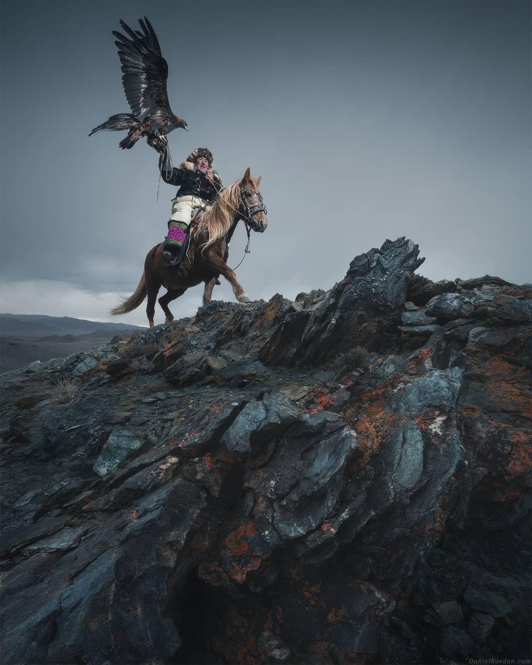 stunning mongolian eagle photography daniel kordan