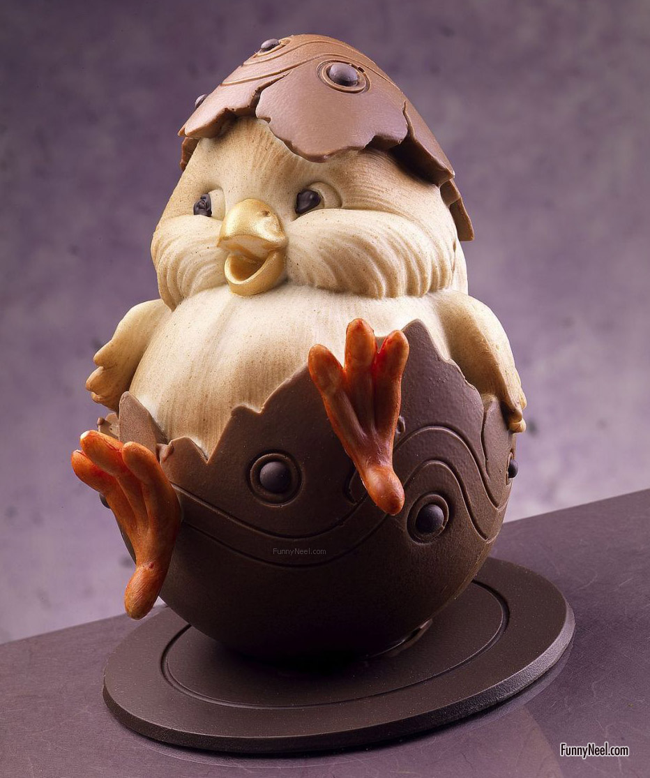 funny chocolate egg chick
