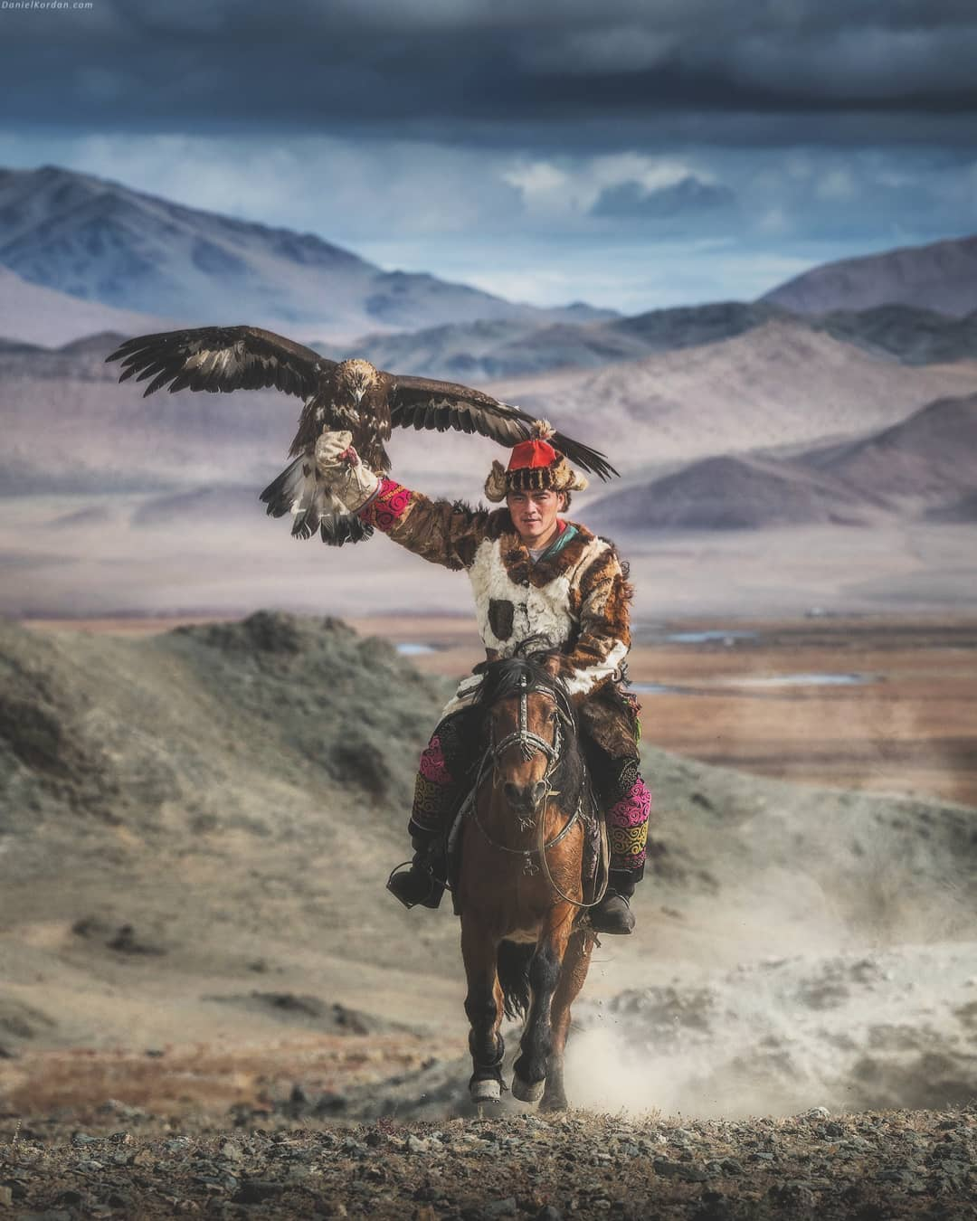 amazing mongolian eagle photography daniel kordan