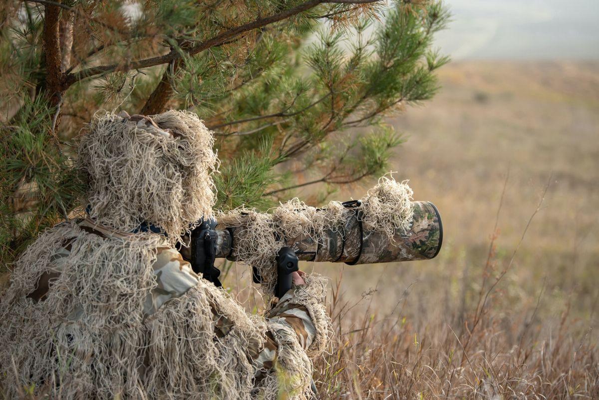 funny wildlife photography photographer camouflage