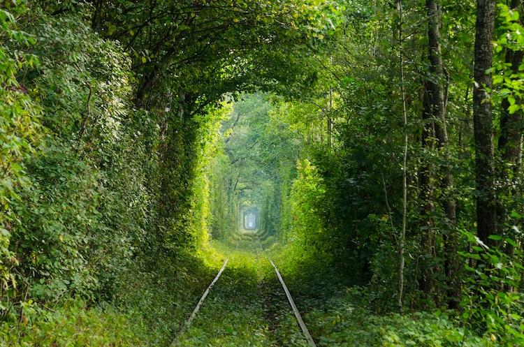 beautiful garden tunnel ukraine sergey miroshnik