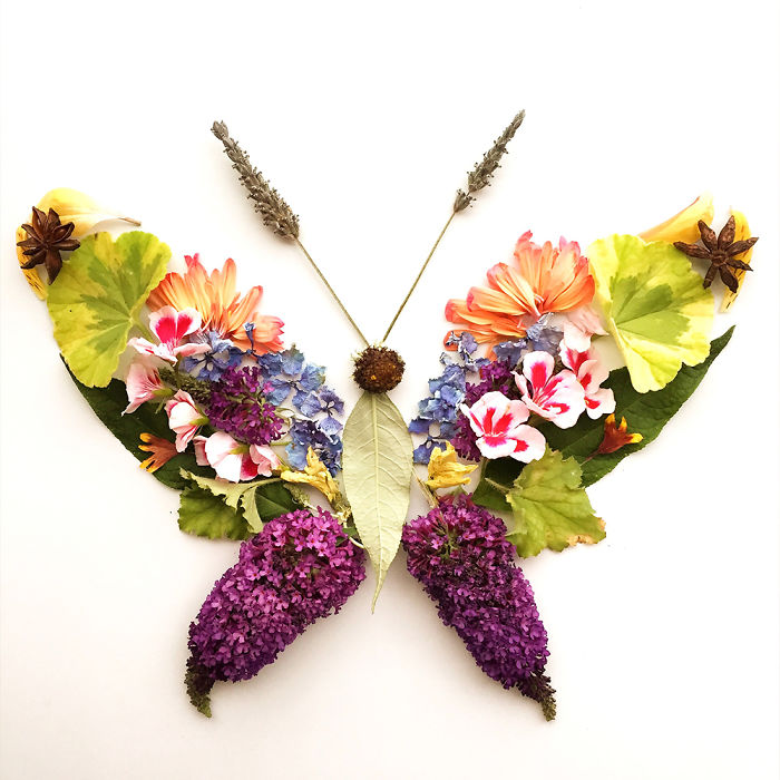 beautiful flower art idea butterfly collins