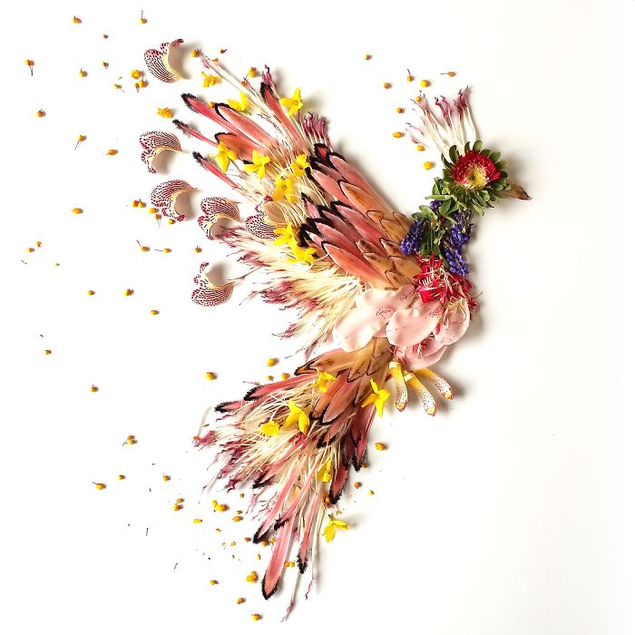 beautiful flower art idea bird collins