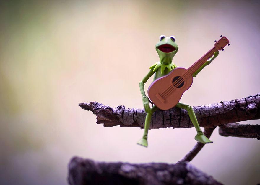 funny kermit frog toy photo mitchel wu