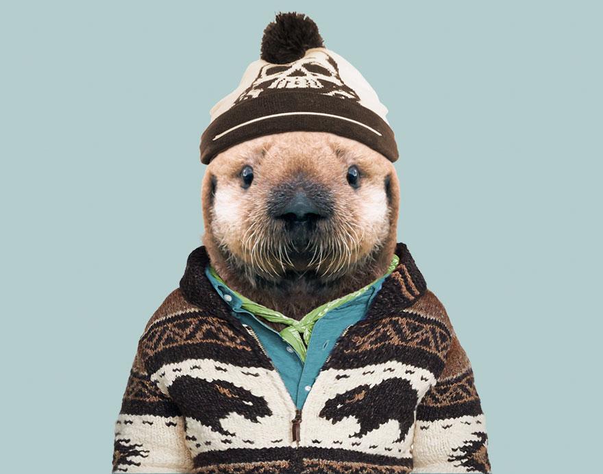 funny animal photo manipulation sea otter yago partal