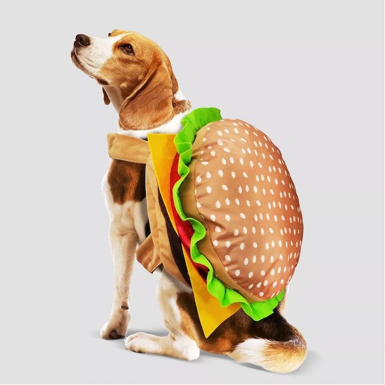 admirable halloween pet costume burger dog