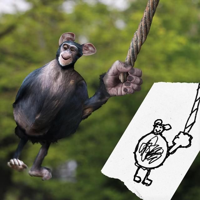 funny photo manipulation kids drawing tom curtis