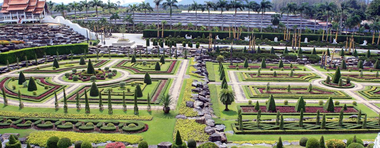 beautiful nong nooch flower garden image thailand