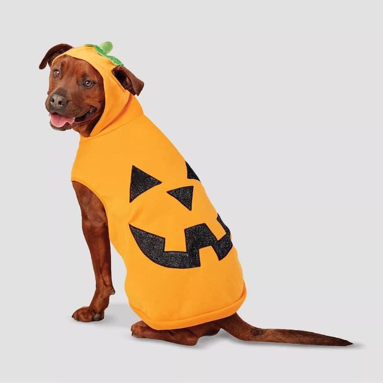 funny halloween pet costume pumpkin hoodie dog