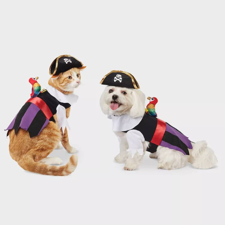 admirable halloween pet costume pirate cat and dog