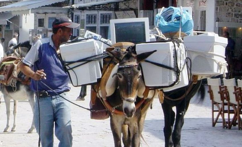 funny computer horse image