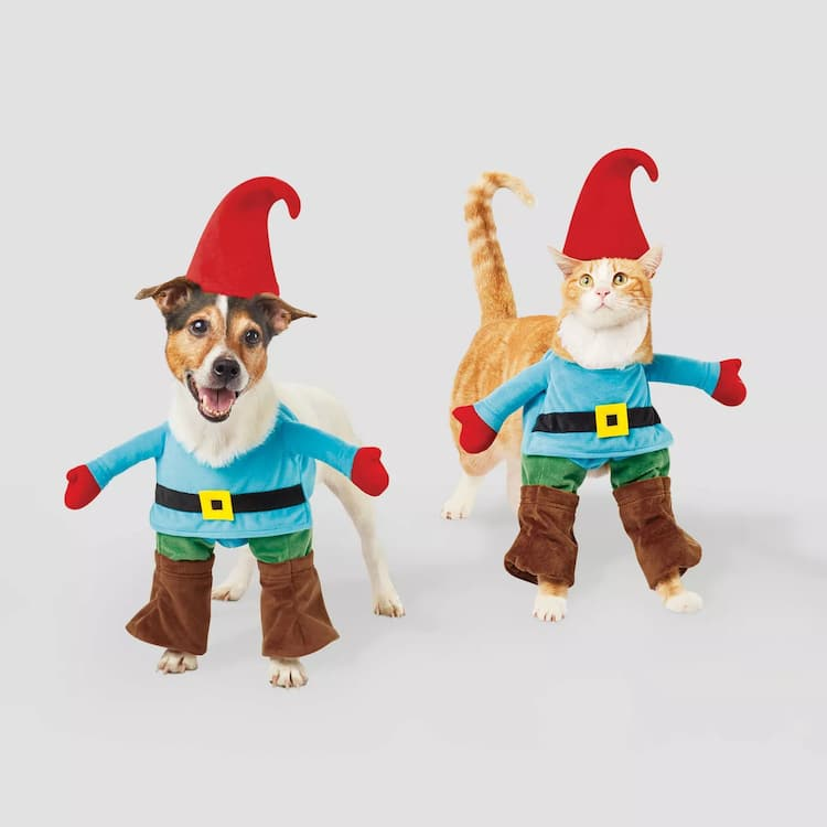 admirable halloween pet costume gnome cat and dog