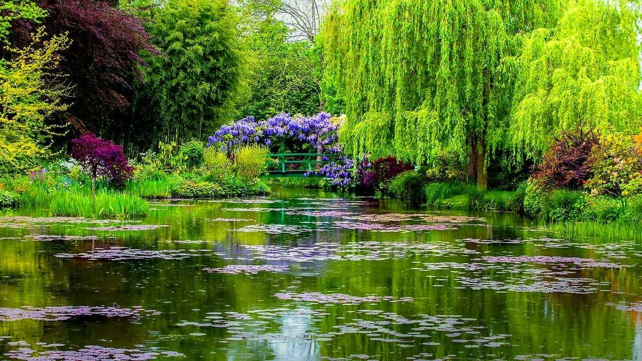 beautiful claude monet garden image france