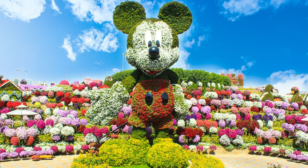 beautiful miracle garden image dubai