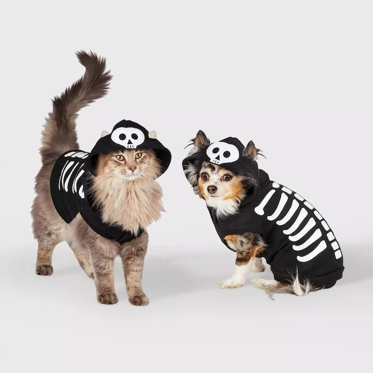 spooky halloween pet costume skeleton cat