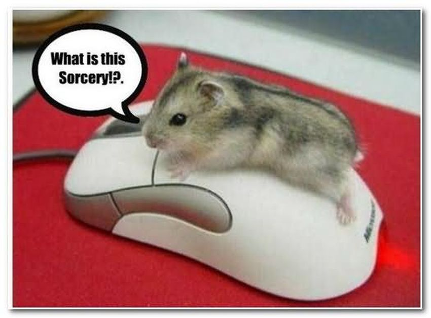 funny computer mouse image