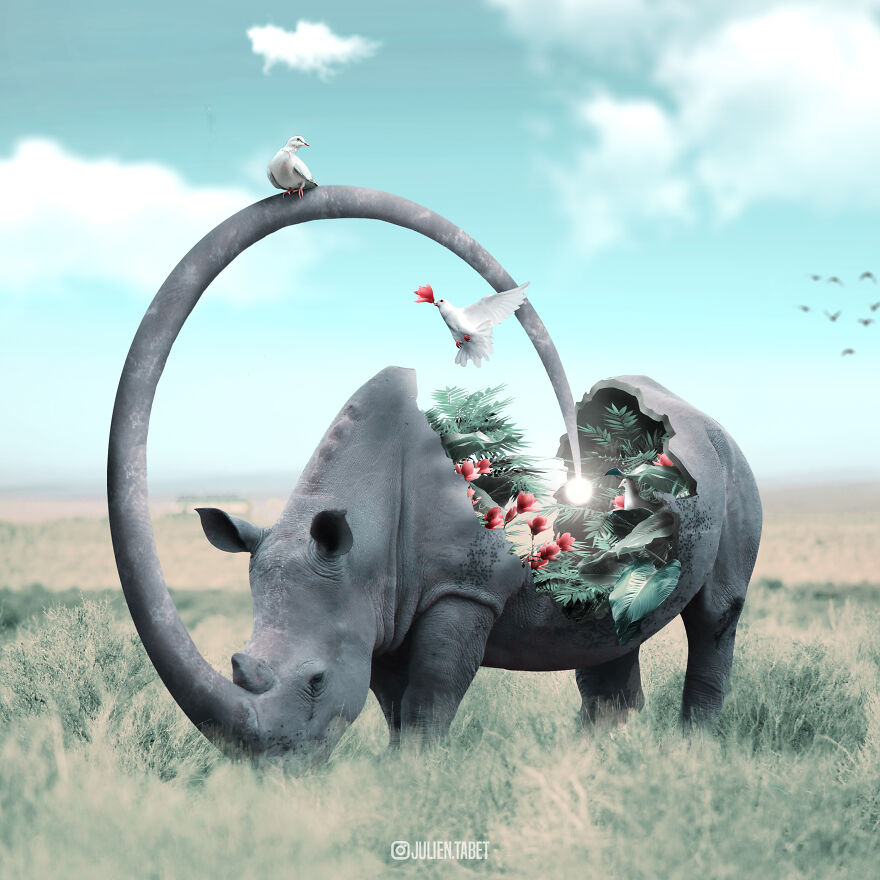 funny animal photo manipulation rhinoceros julien tabet