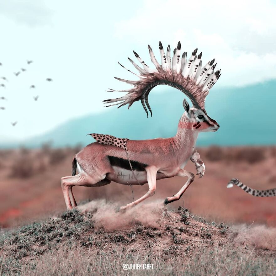 funny animal photoshop works deer julien tabet