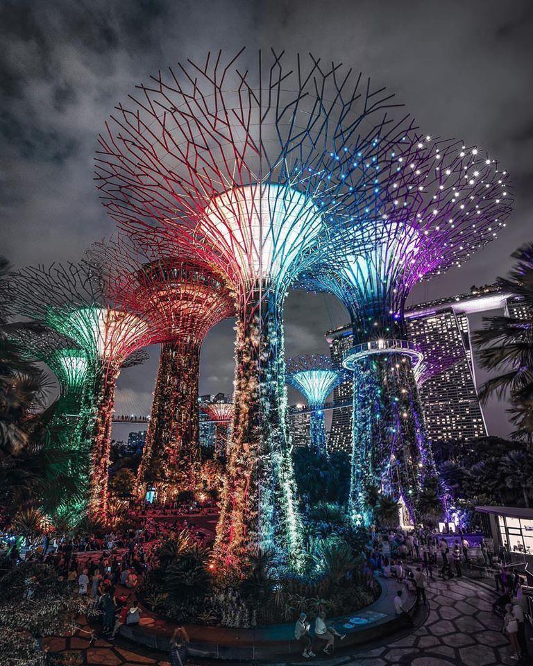 amazing picture architecture design light tree singapore