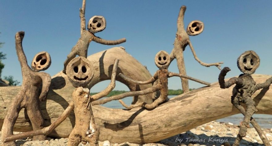 funny driftwood sculpture tamas kanya