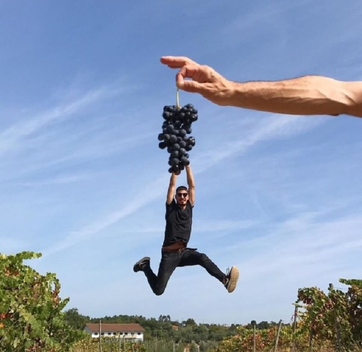 stunning optical illusion photography handing grapes tiago silva