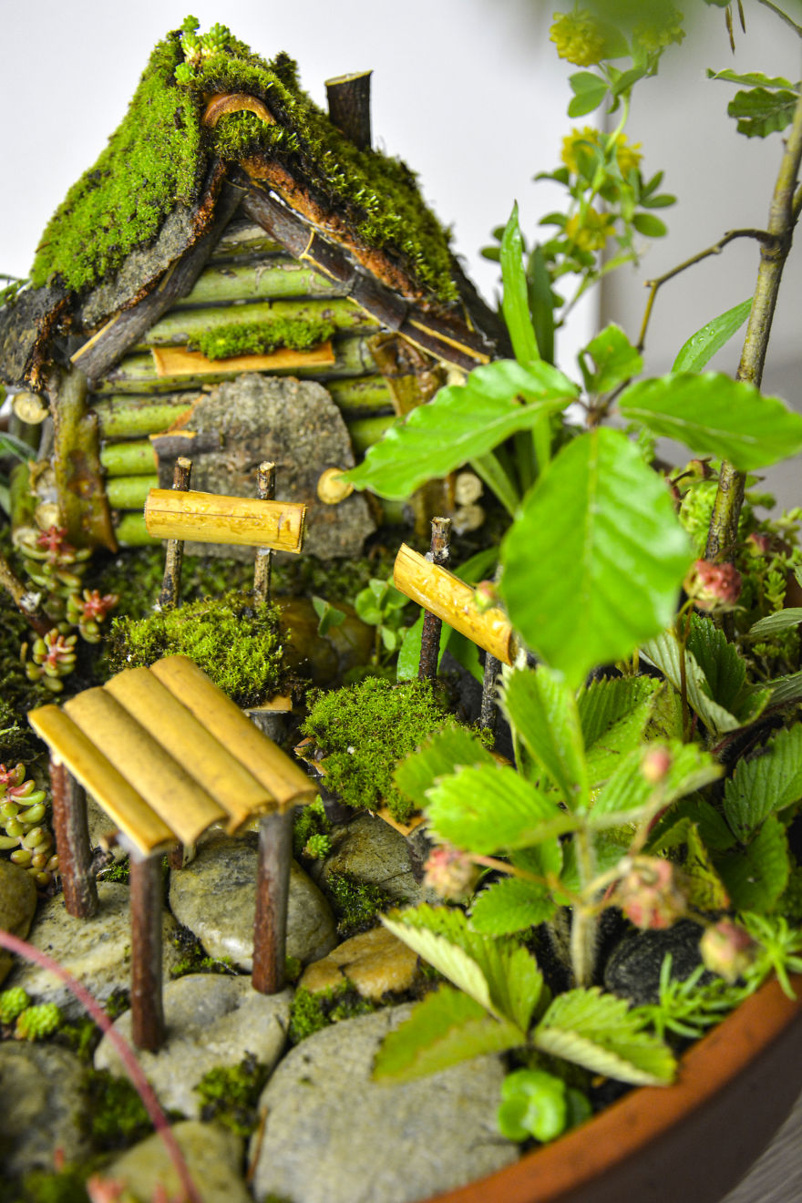 creative miniature garden reka elekes
