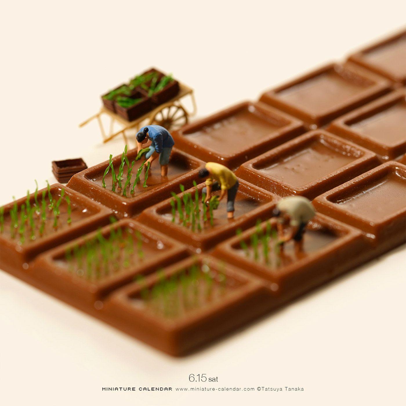 miniature phototgraphy choclate feild tatsuya tanaka