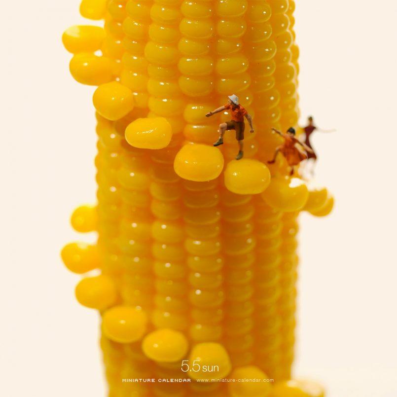 miniature calendar corn staircase tatsuya tanaka