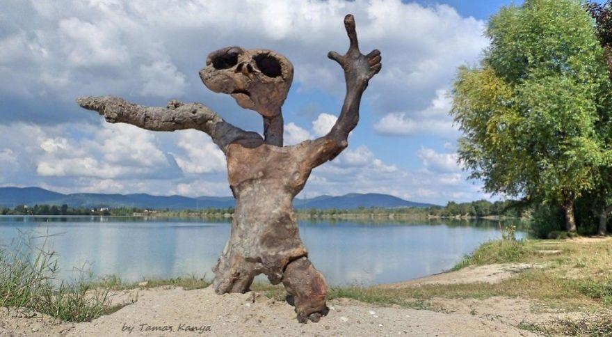 crazy sculpture driftwood tamas kanya
