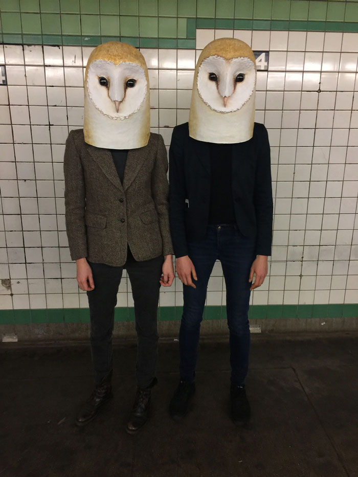 funny animal face mask owl liz sexton