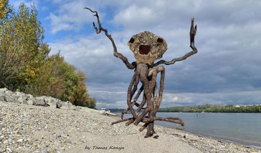 crazy wood sculpture droftwood tamas kanya