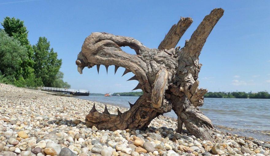 crazy driftwood sculpture tamas kanya